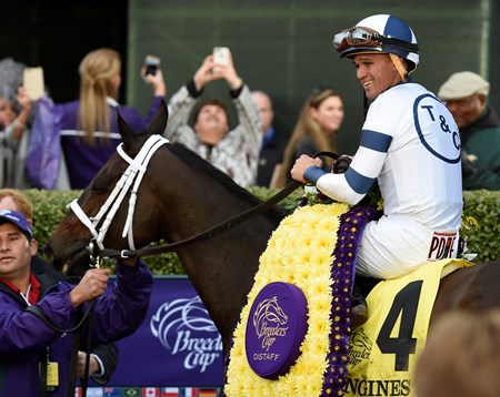 Jockey Javier Castellano is all smiles on Stopchargingmaria after winning the Breeders' Cup Distaff Friday Oct. 30, 2015 at Keeneland Race Track in Lexington, KY