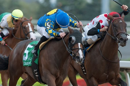 Just Be Kind (blue & yellow silks outside) wins the 2016 Ontario Debutante Stakes
