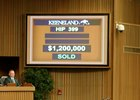 New Sale Topper, High-Priced RNA at Keeneland