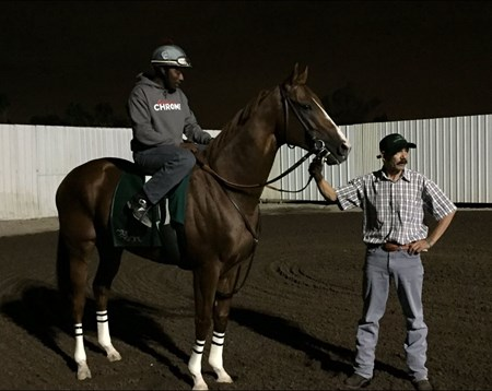 California Chrome - Los Alamitos, September 3, 2016