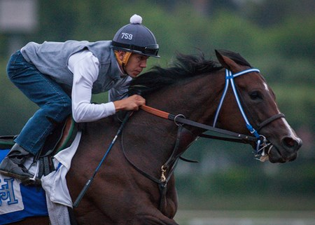 "Songbird worked 5 furlongs in :58.80 earning the bullet work and a ""breezing"" on Sept. 12, 2016"