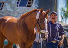 California Chrome arrives at Santa Anita Park Sept. 25