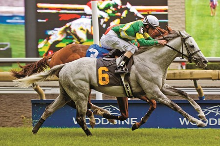 Jockey Ramon Dominguez guides Musketier to victory in the Grade 3 Singspiel Stakes