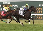 War Dancer winning the Sept. 10 PTHA President's Cup Stakes