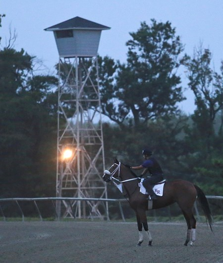 Disco Rose trained by Robert Reid, Jr. on the track this morning at Parx Racing in Bensalem, Pennsylvania in preparation for her start in Saturday's  $1,000,000 Grade I Cotillion Stakes at Parx.