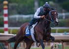 Songbird Drills Bullet at Santa Anita