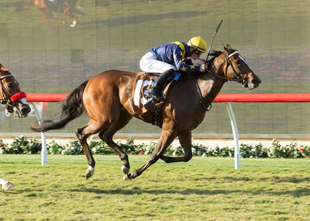 With Honors, with Flavien Prat, wins the $100,000 Del Mar Juvenile Fillies Turf Sept. 5, 2016.