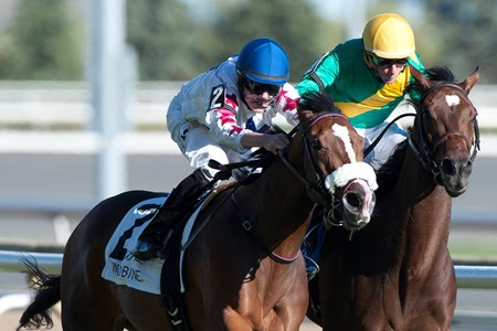 Caren wins the 2016 Ontario Colleen Stakes at Woodbine Racetrack