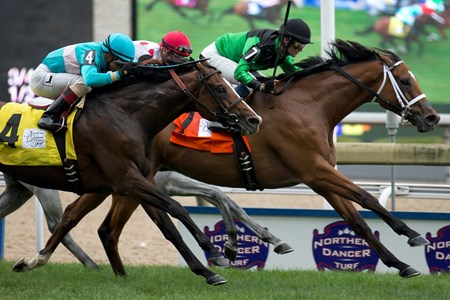 The Pizza Man wins the 2016 Northern Dancer Stakes