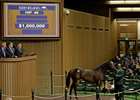 Solid Start to Keeneland September Sale