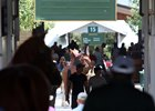 Keeneland Sees Gains in Final Book 5 Session