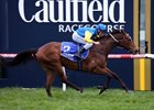 Black Heart Bart, Bon Aurum Win at Caulfield