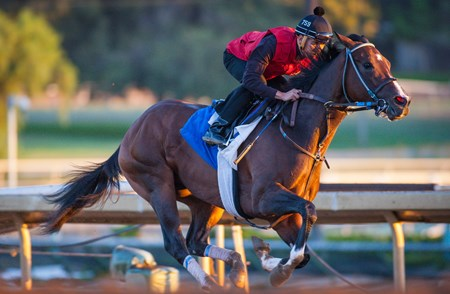 Fox Hill Farms' undefeated Songbird logged her final serious work at Santa Anita Park Sept. 18 before her planned flight later in the evening for Parx Racing, where she is scheduled to start in the Sept. 24 Cotillion Stakes (gr. I).