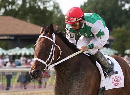 Cathryn Sophia Voted Top Midlantic Bred For 2016 Bloodhorse
