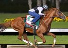 California Chrome works Sept. 24 at Los Alamitos Race Course