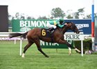 Ticonderoga breaking his maiden last September at Belmont Park