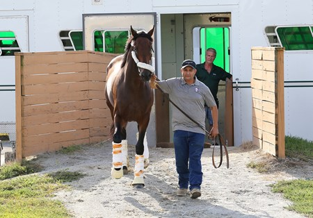 Nyquist, led by his groom Elias Anaya, arrived on the backside after his cross-country plane ride from California to Parx Racing in Bensalem, Pennsylvania on September 21, 2016.