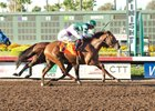 Accelerate wins the Los Alamitos Derby