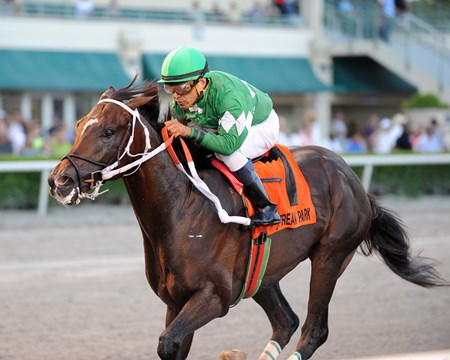 Three Rules wins the 2016 Florida Sire Series - Affirmed Division