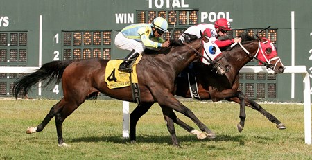 Granny's Kitten wins the 2016 Alphabet Soup Stakes at Parx Racing in Bensalem, Pennsylvania on September 24, 2016.
