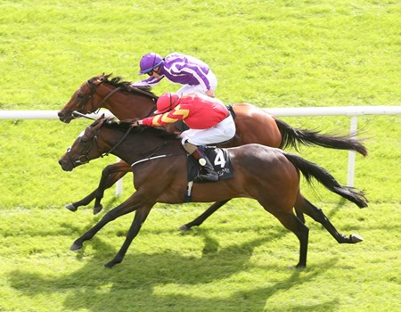 Intricately (IRE), red silks, wins the Moyglare Stud Stakes, defeating Beggy, purple silks, at the Curragh Sept. 11, 2016.