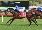 Winx wins 2016 George Main Stakes for 11th successive victory and seventh group I triumph