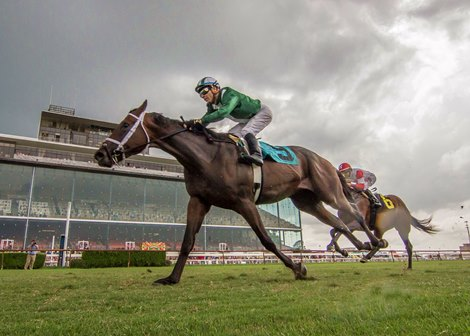 New Schedule Helps Louisiana Downs Increase Handle