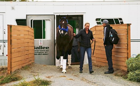 Songbird, escorted by assistant trainer Christina Jelm, arrived shortly before 6pm on the backside of Parx Racing in Bensalem, Pennsylvania on September 19,2016. Songbird will face off against home town hero Cathryn Sophia and four other challengers in Saturday's $1,000,000 Grade I Cotillion Stakes at Parx Racing.