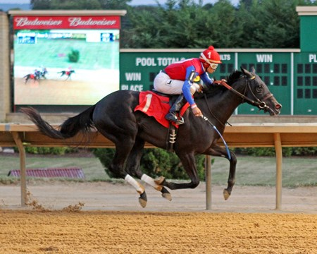 Unaquoi wins the 2016 Rachel's Turn Stakes