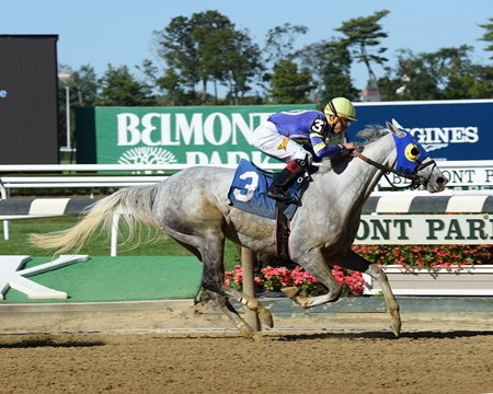 Sweetrayofsunshine wins race 5 at Bemont Park Sept. 22, 2016