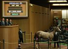 Tapit Colt New Sale Topper at $1.2 Million