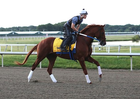 Gun Runner, trained by Steve Asmussen and ridden by excercise rider Carlos Rosas during training hours on September 22, 2016