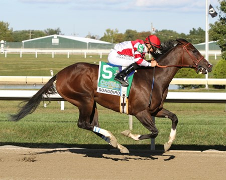 Songbird with Mike Smith win the 50th Running of the Cotillion Stakes (GI) at Parx on Septemer 24, 2016.