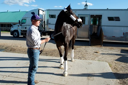 Tepin arrives at Woodlbine Racetrack on September 14, 2016