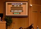 Magnier Acquires Medaglia d'Oro Colt for $1M
