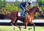 California Chrome works at Los Alamitos Race Course Sept. 10