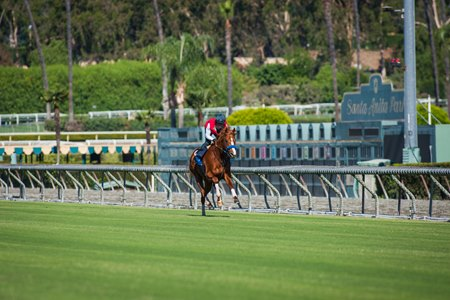 The first work over Santa Anita's new turf course.