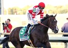 Songbird Logs Final Breeze for Distaff