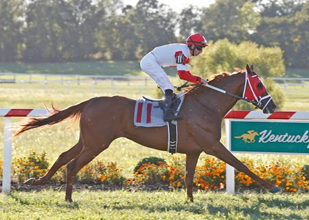 Oscar Nominated wins the Dueling Grounds Derby at Kentucky Downs Sept. 11, 2016