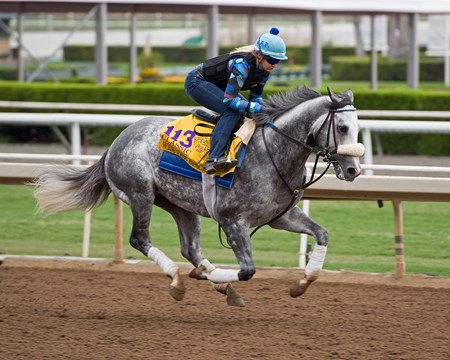 Win the Space