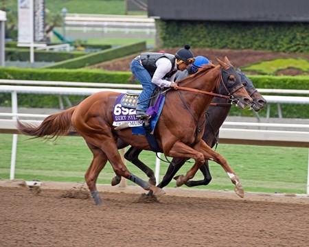 Dortmund works at Santa Anita in preparation for 2016 Breeders' Cup on Oct. 30, 2016, in Arcadia, CA.