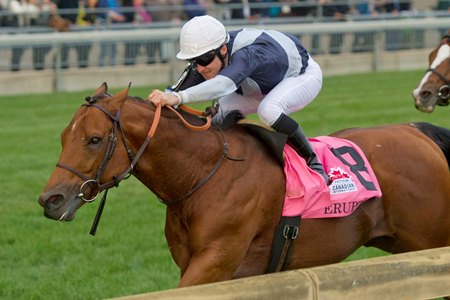 Erupt wins the Pattison Canadian International