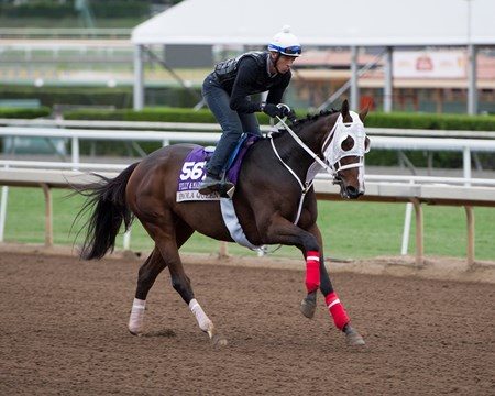 Paola Queen