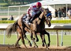 Noted and Quoted gets the victory in the Chandelier Stakes