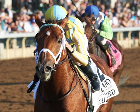 Noble Bird wins the Hagyard Fayette Stakes