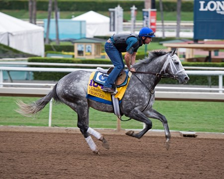 Frosted Works at Santa Anita in preparation for 2016 Breeders' Cup on Oct. 30, 2016, in Arcadia, CA.