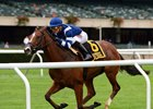 Oscar Performance Draws Off to Win Pilgrim