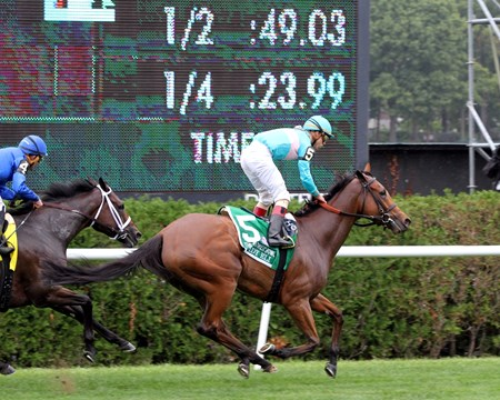 Lady Eli with Irad Ortiz Jr. winning the 39th Running of the Flower Bowl at Belmont Park on October 8, 2016.