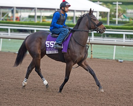 By the Moon Works at Santa Anita in preparation for 2016 Breeders' Cup on Oct. 31, 2016, in Arcadia, CA.