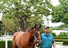 Masochistic schools in the paddock at Santa Anita prior to his Breeders' Cup bid